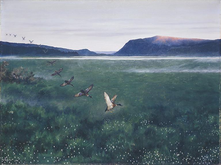Theodor_Kittelsen_12_villender_1897-Post-November